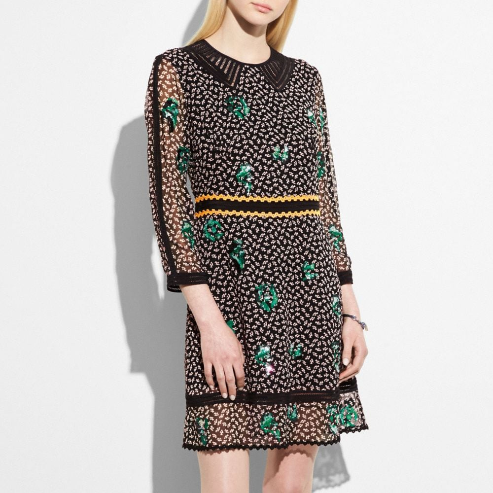 EMBROIDERED GRAPHIC DUCK DRESS