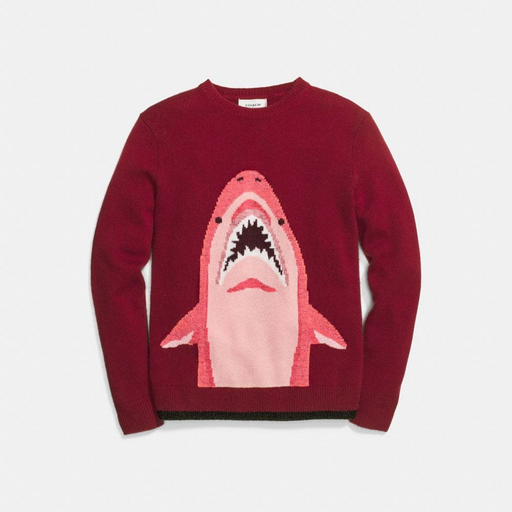 SHARKY INTARSIA SWEATER