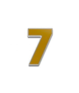 Number 7 Souvenir Pin