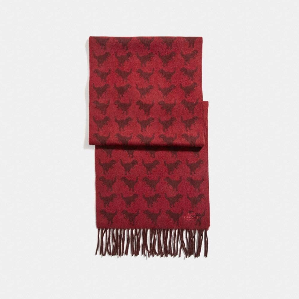 GRAPHIC REXY SCARF