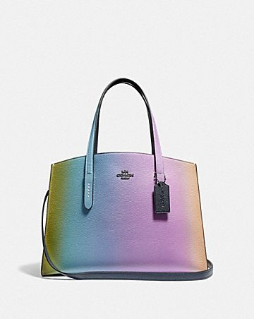 1ff00565c680 CHARLIE CARRYALL WITH OMBRE