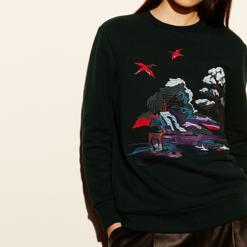 EMBROIDERED SOUVENIR SKY SWEATSHIRT
