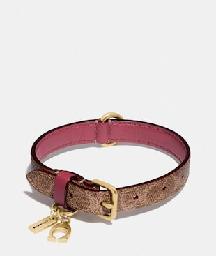 SMALL PET COLLAR IN SIGNATURE CANVAS