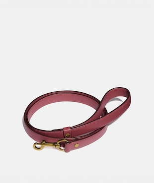 LARGE PET LEASH