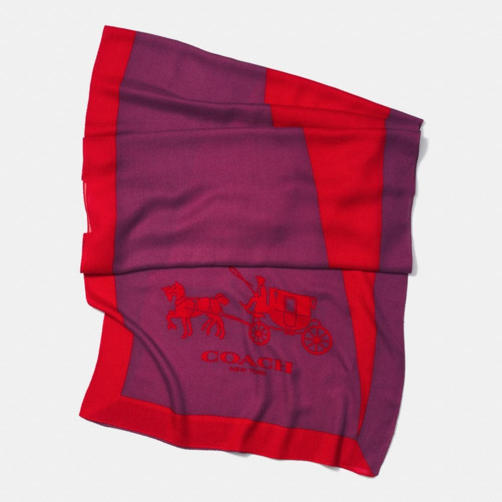 COLORBLOCK OBLONG SCARF