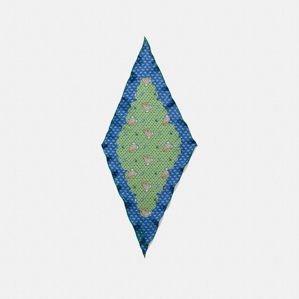 PIXEL PAISLEY PRINT SILK DIAMOND