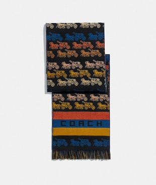 RAINBOW HORSE AND CARRIAGE LONG MUFFLER