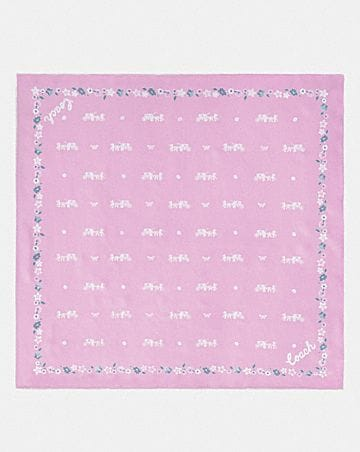 HORSE AND CARRIAGE SILK BANDANA