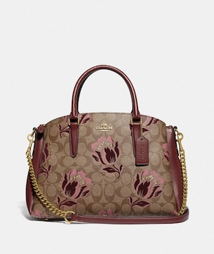 SAGE CARRYALL IN SIGNATURE CANVAS WITH DESERT TULIP PRINT FLOCKING