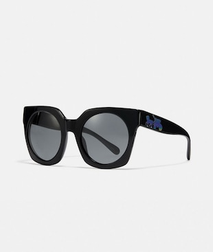 HORSE AND CARRIAGE HOLOGRAM SUNGLASSES