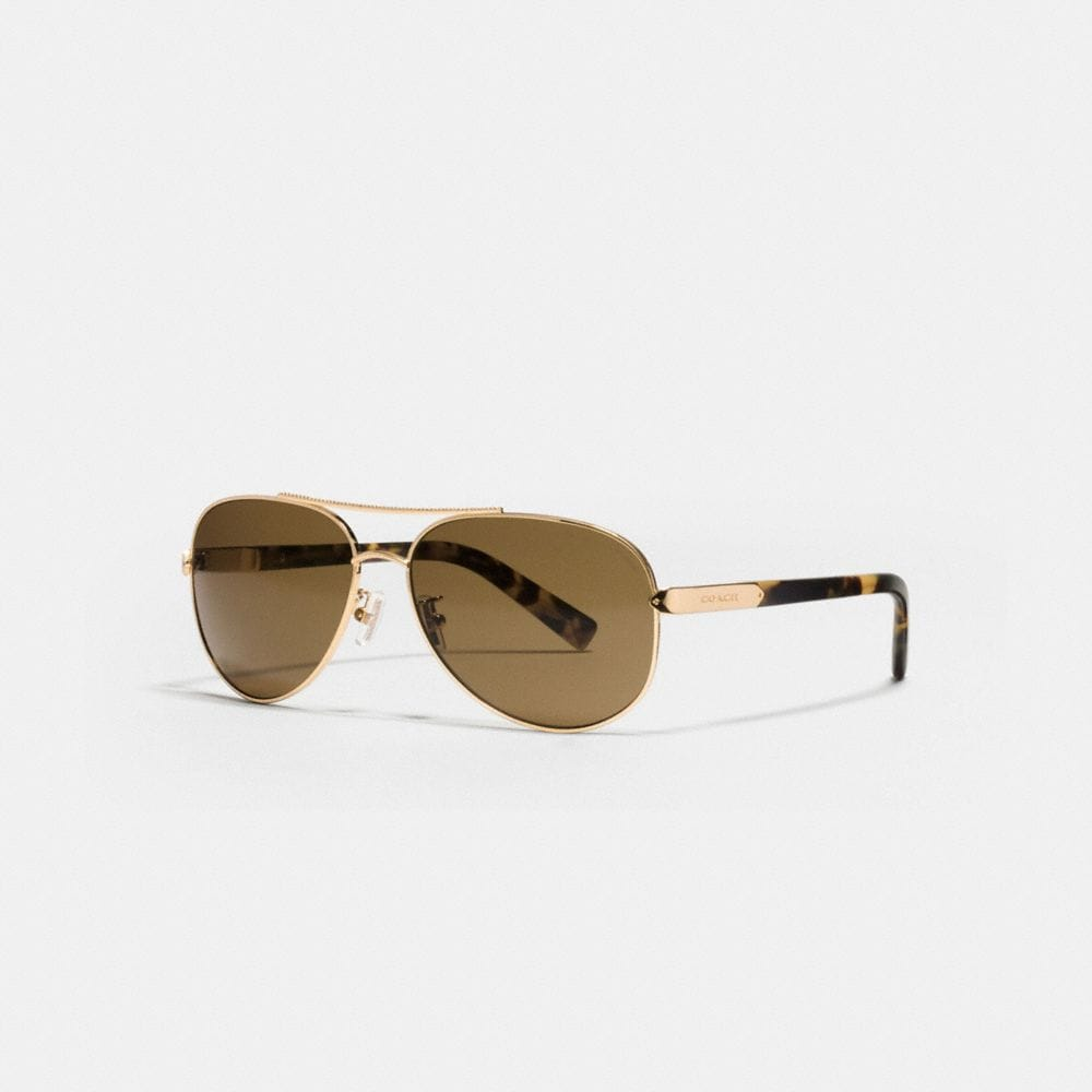 TAG TEMPLE PILOT POLARIZED SUNGLASSES